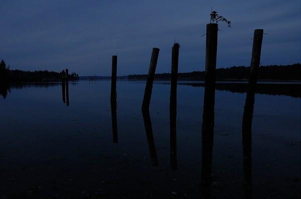 The bay at night.