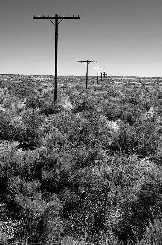 Old telephone poles mark the course of Route 66.