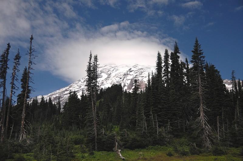 Mt Rainier wears a hat of clouds.