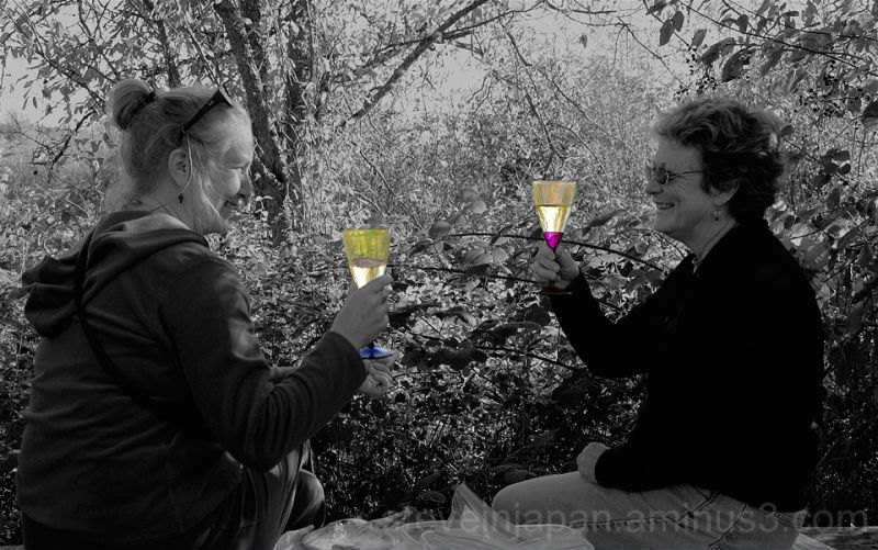 Two ladies enjoying a picnic outdoors.