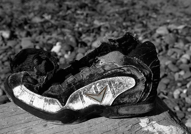 An old shoe abandoned along Dungeness Spit.