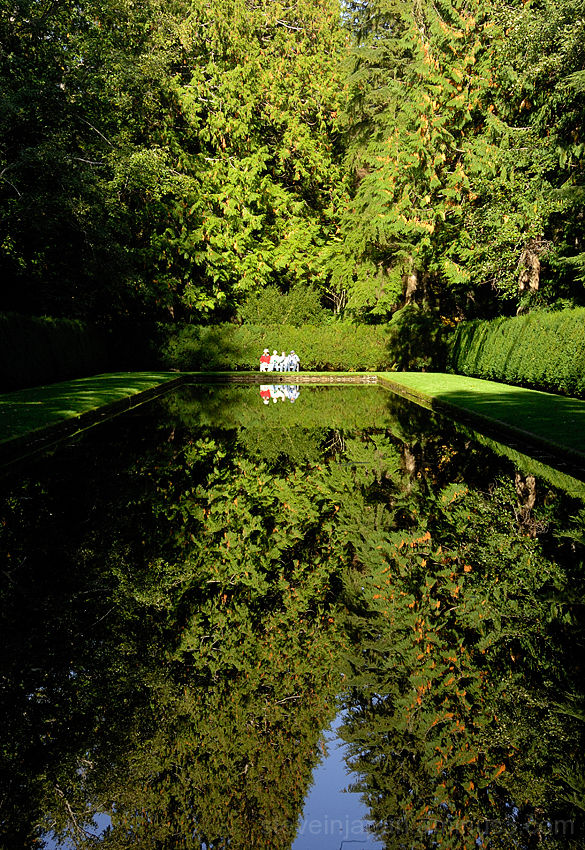 The reflecting pool at Bloedel Reserve.