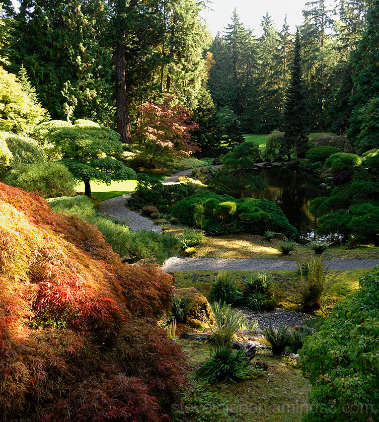 The Japanese garden at the Bloedel Reserve.