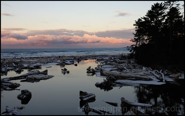The morning after the snow at Kalaloch Creek.