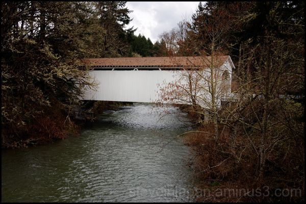 The Mosby Creek Covered Bridge in Lane county, OR.