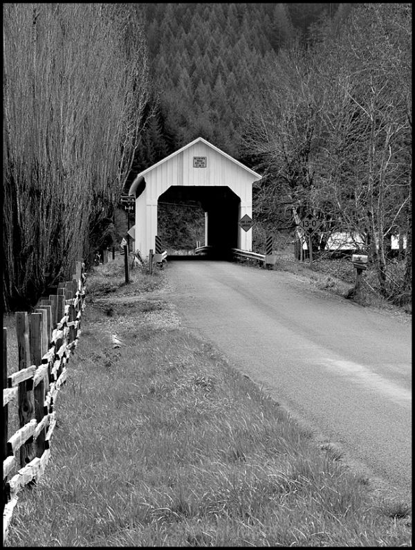 The Nelson Mountain Covered Bridge in Oregon, USA.