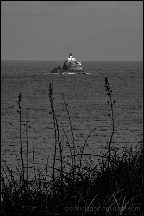 Tillamook Rock Lighthouse as seen from Ecola SP.