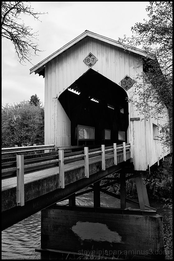 The Cavitt Creek covered bridge in Oregon, USA.