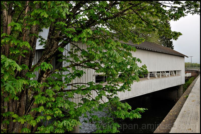 The Crawfordsville covered bridge in Oregon, USA.