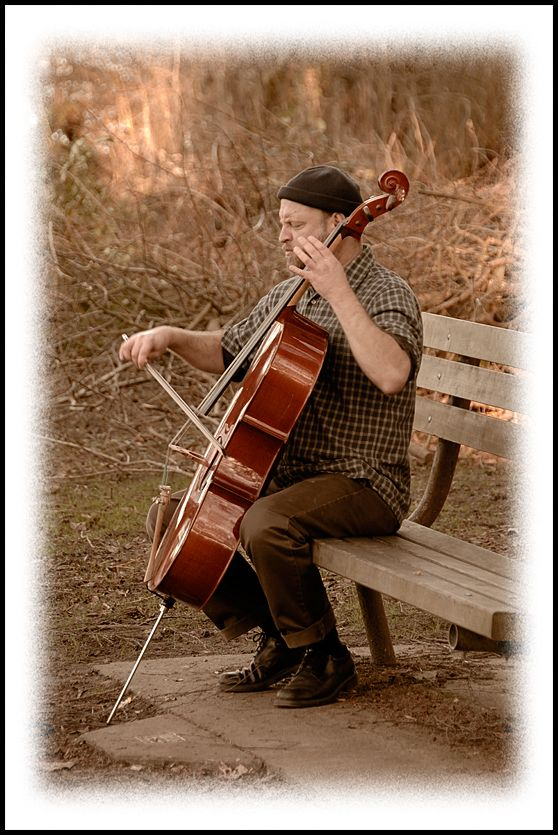 A musician plays his cello at Green Lake.