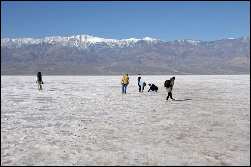 Salt flats at Badwater in Death Valley.