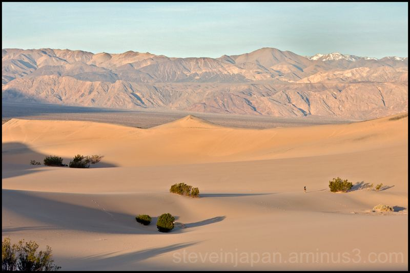 Dunes at dawn at Stovepipe Wells at Death Valley.
