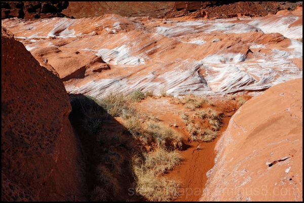 A spring in the red rock at Devils' Fire.