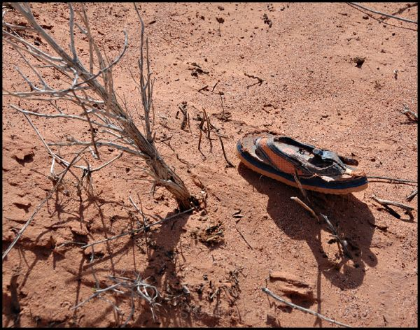 A lost shoe at Devils' Fire in Nevada.