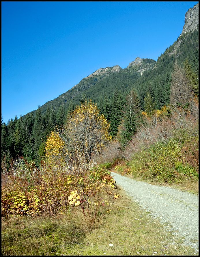 Some fall color along the trail to Monte Cristo.