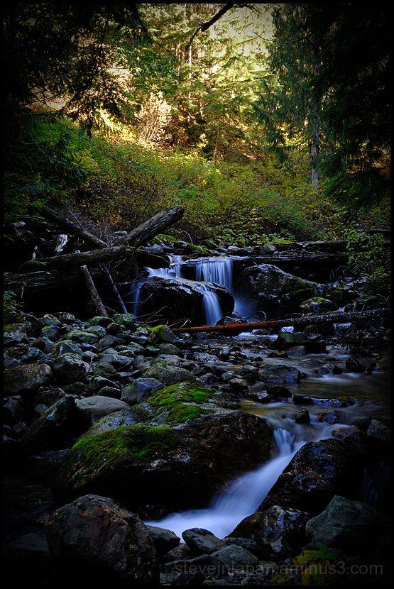 A pretty creek running near Monte Cristo.