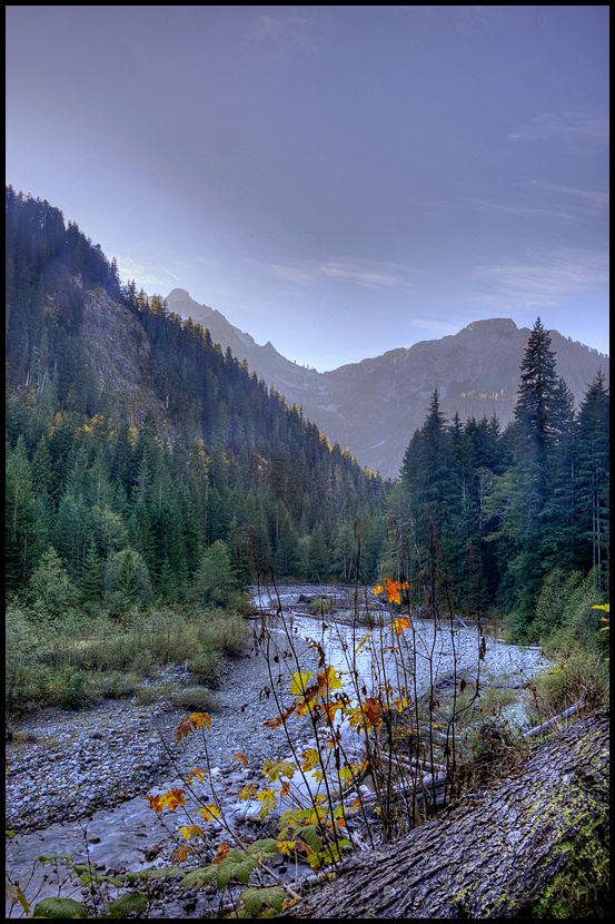 Along the South Fork Sauk River near Monte Cristo.