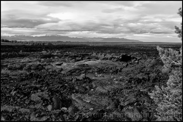 A sea of lava at Craters of the Moon NM.