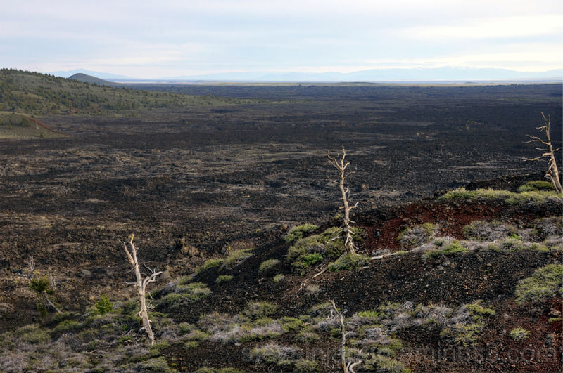 A huge lava field at Craters of the Moon NM.