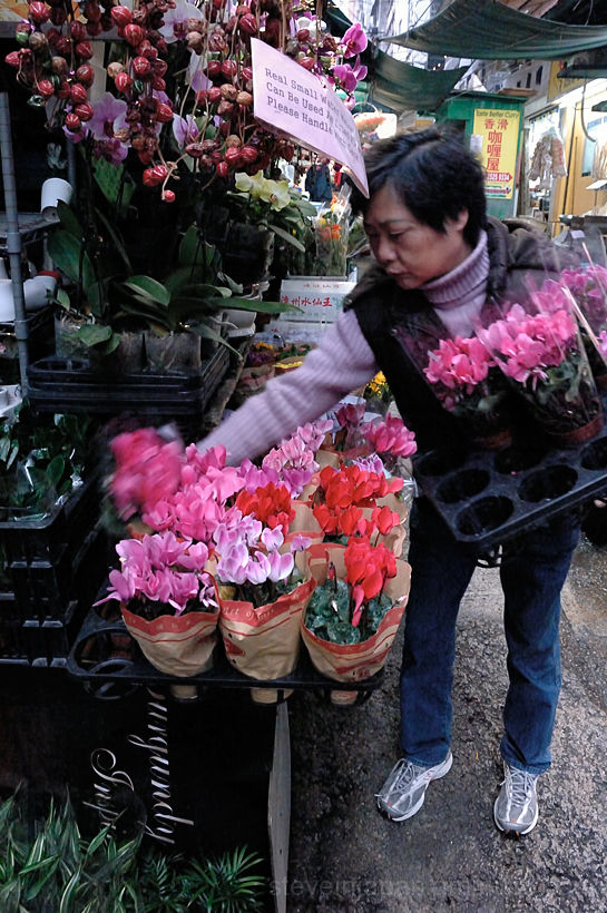 A flower seller in the Graham Street market.