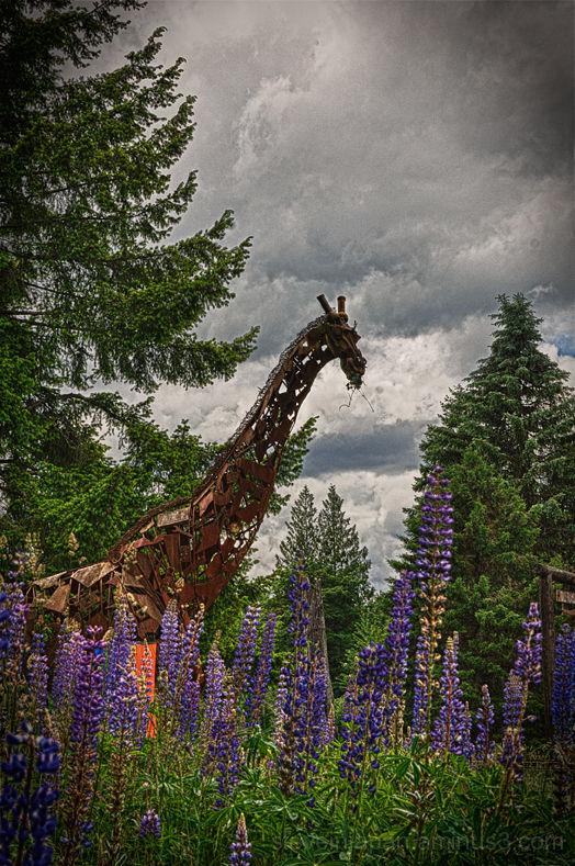 A scrap iron giraffe sculpture.