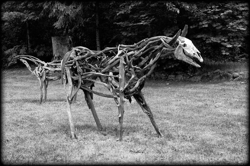 Horses made of found items - sticks and bones.