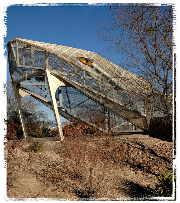 A diamondback rattlesnake bridge in Tucson, AZ.
