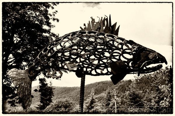 A salmon sculpture made of scrap iron.