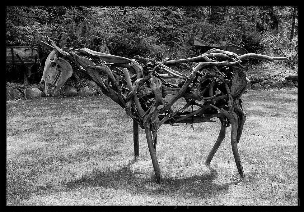 A horse made of found items - sticks and bones.