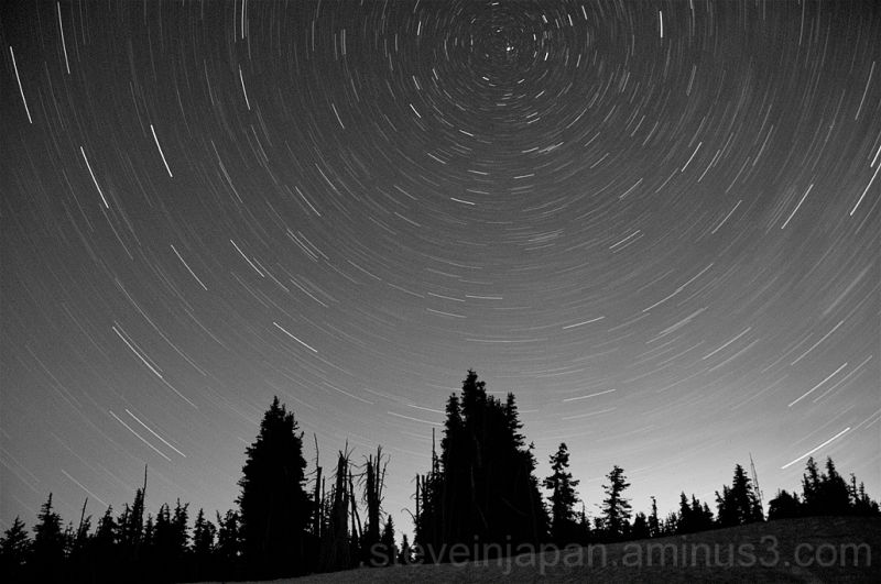 Star trails over the Hurricane Ridge.