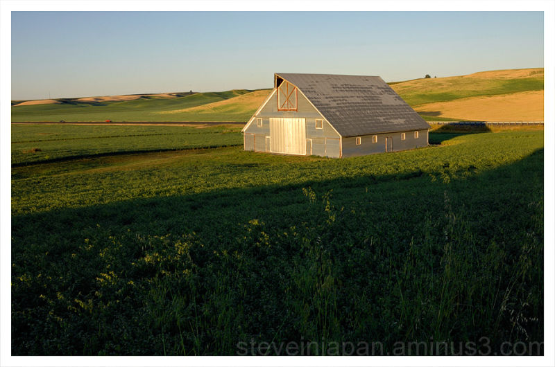 A handsome barn in the Palouse.
