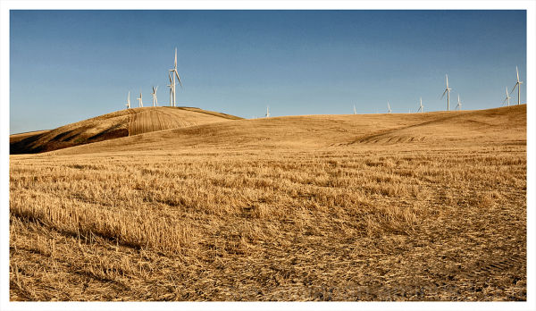 Wind generators and wheat fields in the Palouse.
