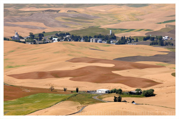 A small farming village in the Palouse.