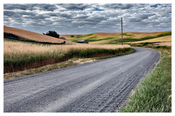 One of the many gravel roads in the Palouse.