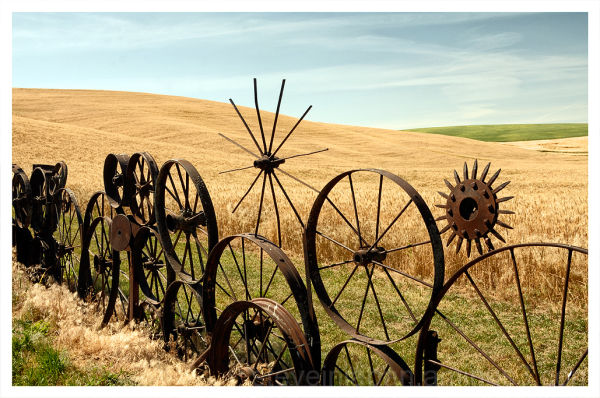 An iron fence made of antique wagon wheels in.