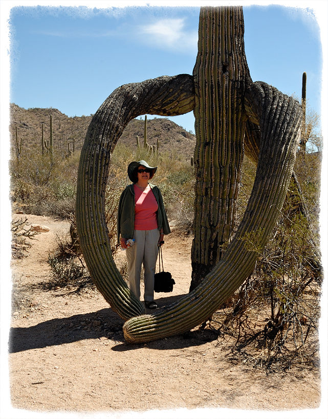 A lady embraced by a giant Saguaro cactus.