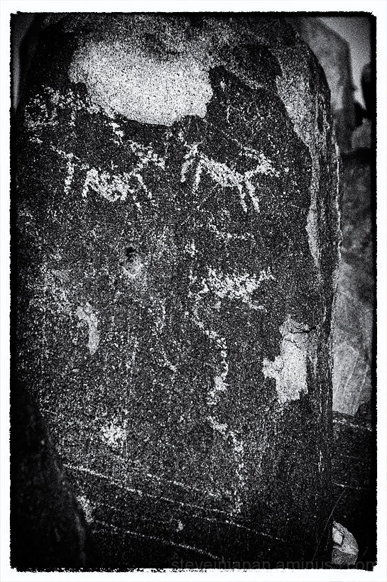 Petroglyphs at Saguaro National Park.