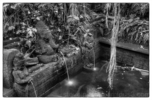 A pool near a temple in the Sacred Monkey Forest.