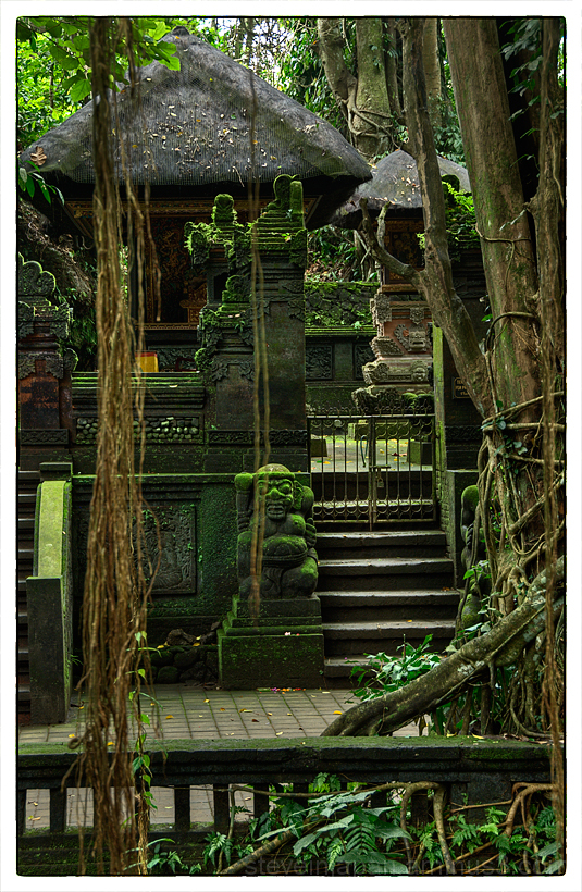 A temple in the Sacred Monkey Forest in Bali.