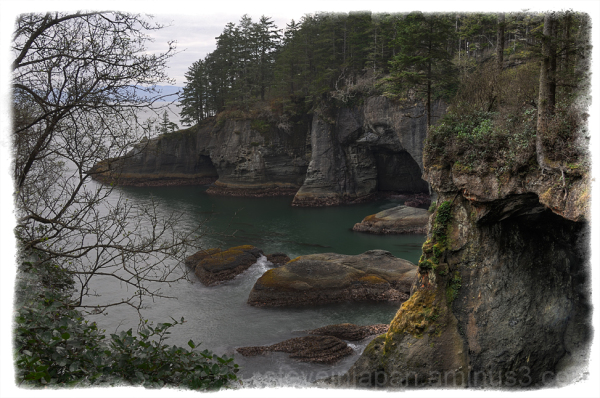 Sea caves on Cape Flattery.