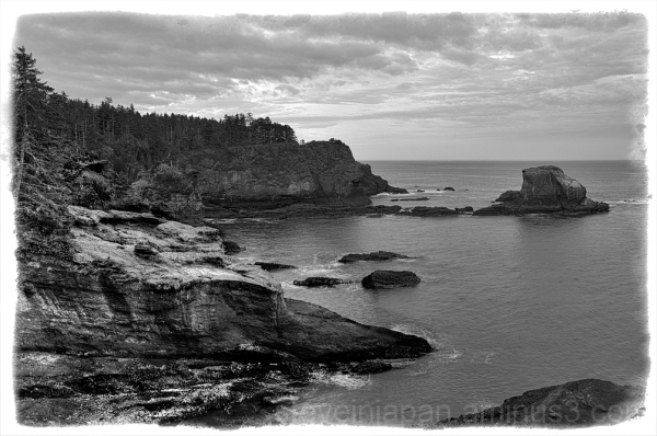 A rock that sea gulls enjoy at Cape Flattery.