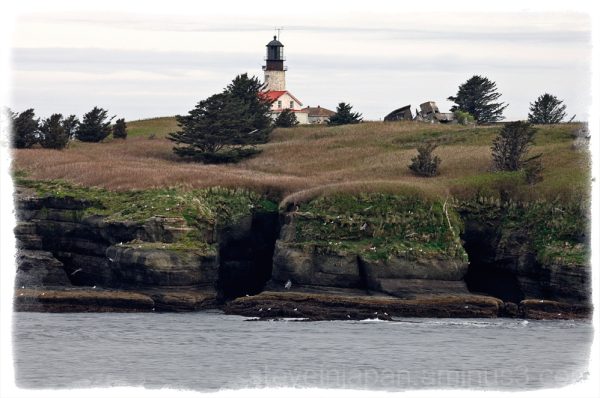 Cape Flattery Lighthouse