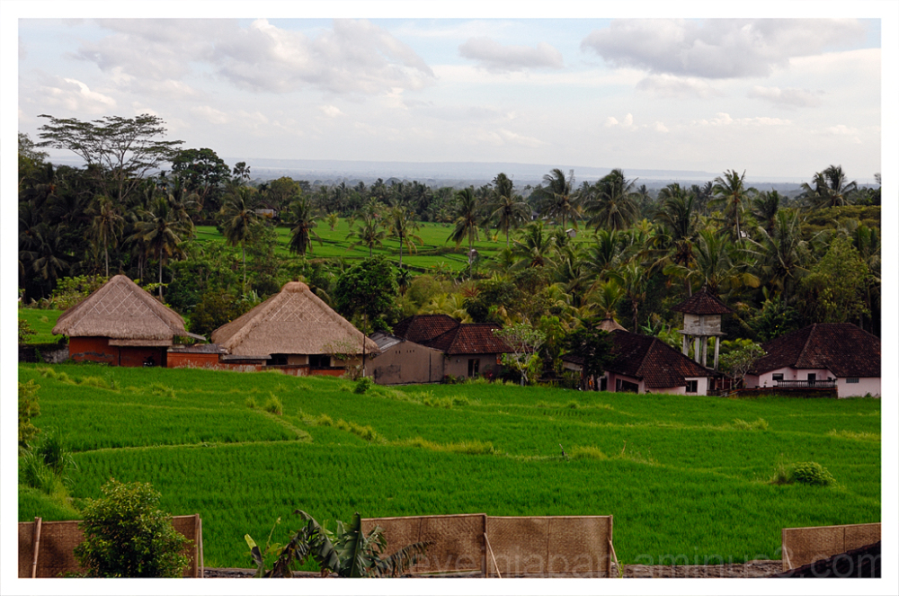 Waka Di Ume resort in Ubud, Bali.