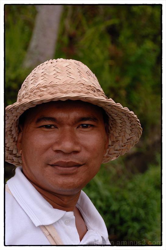 A rice field walk in Ubud, Bali.