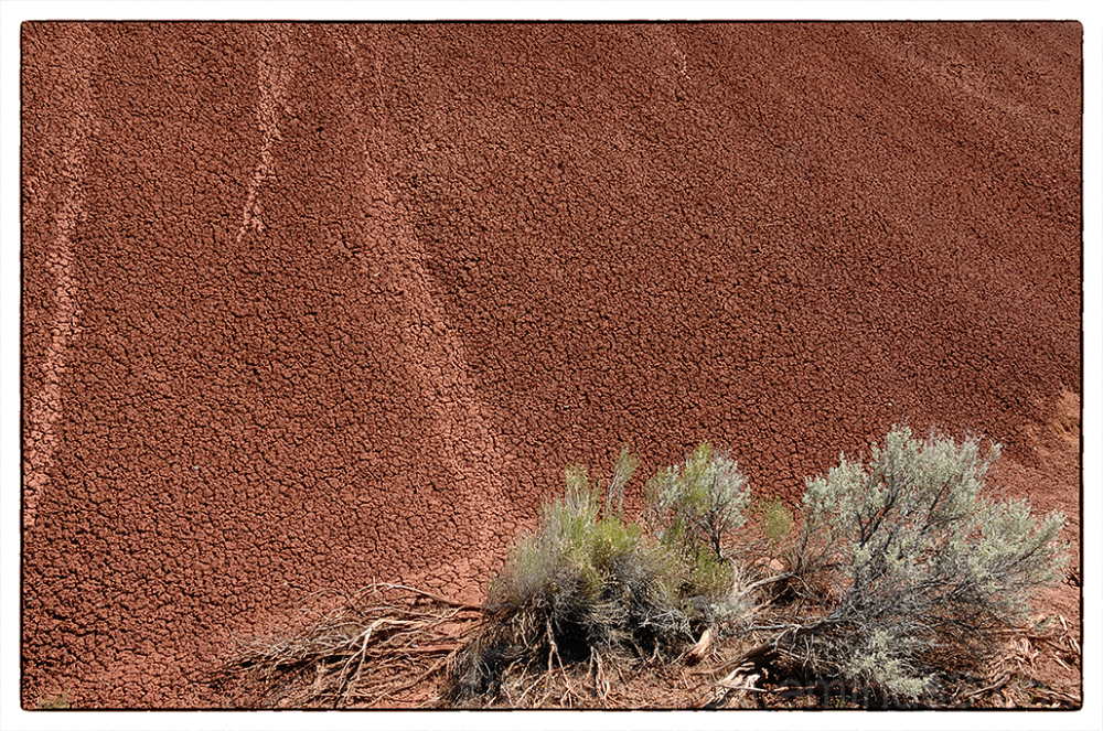 Painted Cove in the Painted Hills in Oregon.