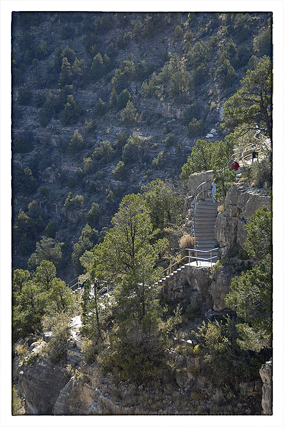 Climbing stairs at Walnut Canyon NM.