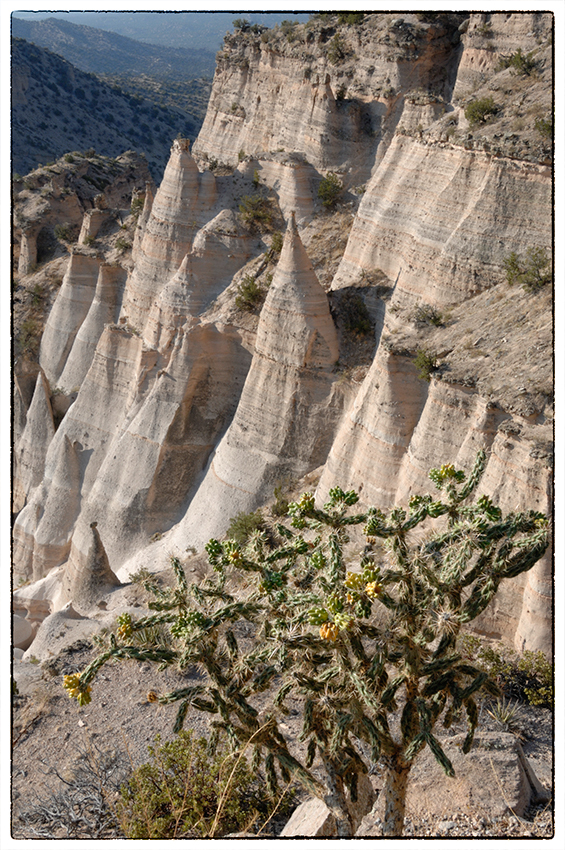 Exploring the mesa top at Tent Rocks NM.