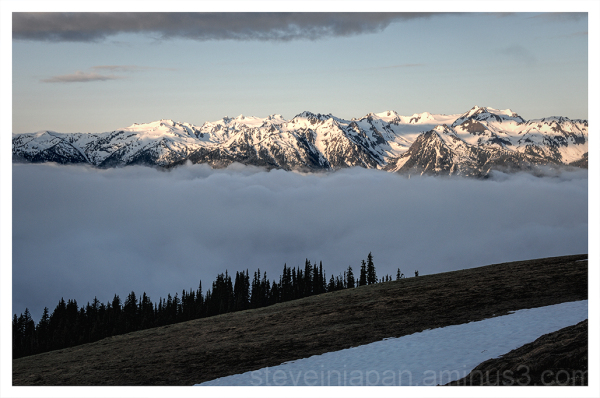 The clouds parted briefly at Hurricane Ridge.