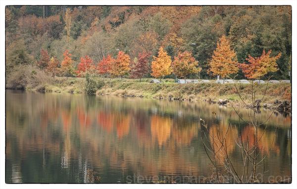Autumn colors around Capitol Lake in Olympia, WA.