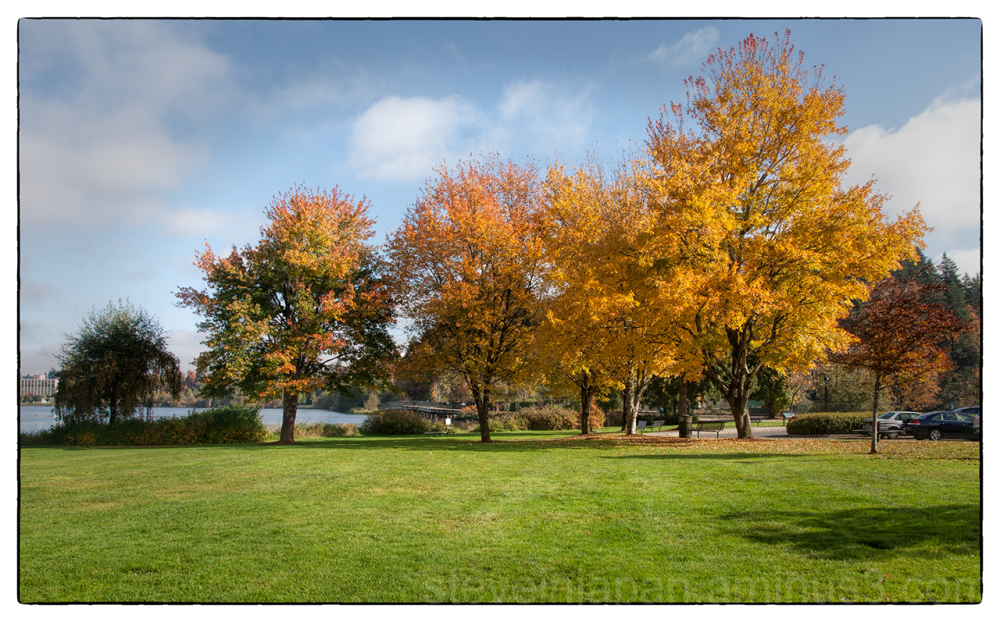 Autumn colors around Capitol Lake in Olympia, WA.